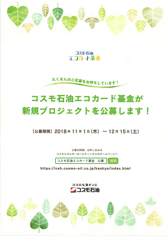 20181112_191137_0001